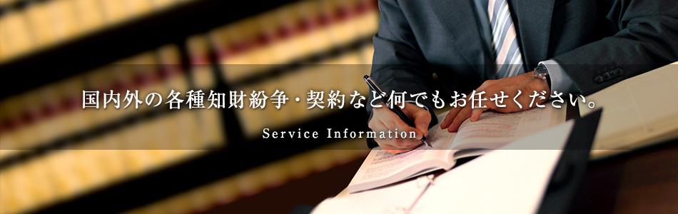 国内外の各種知財紛争・契約など何でもお任せください。